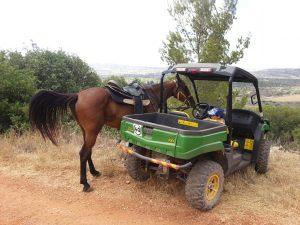 חבילת טיולי טרקטורונים עם סוסים בצפון