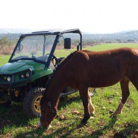 טיול טרקטורונים וריינג'רים וסוסים משולב